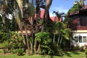 Garden & Villa 1